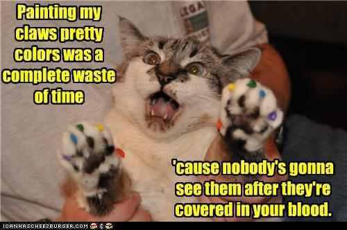 lol cat nakid human